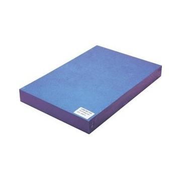 Korice za spiralni uvez A4 250g reljefni karton 100/1 plave
